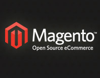 Magento robotx.txt File